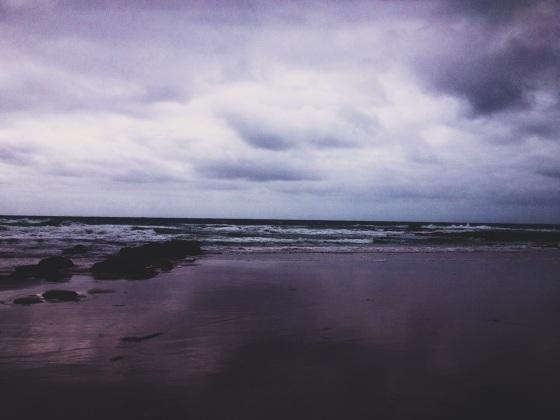 photo 3 (8)